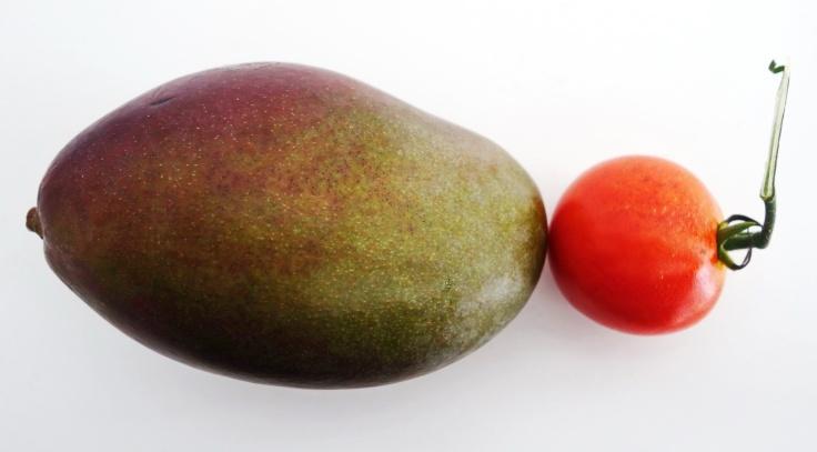 Tomaten trifft Mango Tomaten Mango Suppe DSC08269a