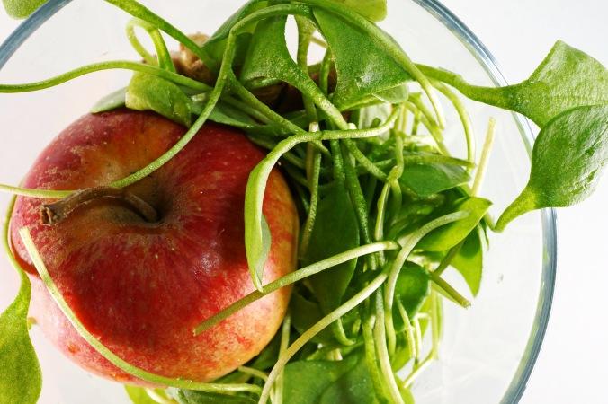 Gruener Smoothie Postelein Orange Apfel DSC05055a.JPG