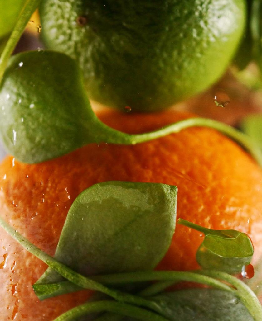 Gruener Smoothie Postelein Orange Apfel DSC05066a.JPG