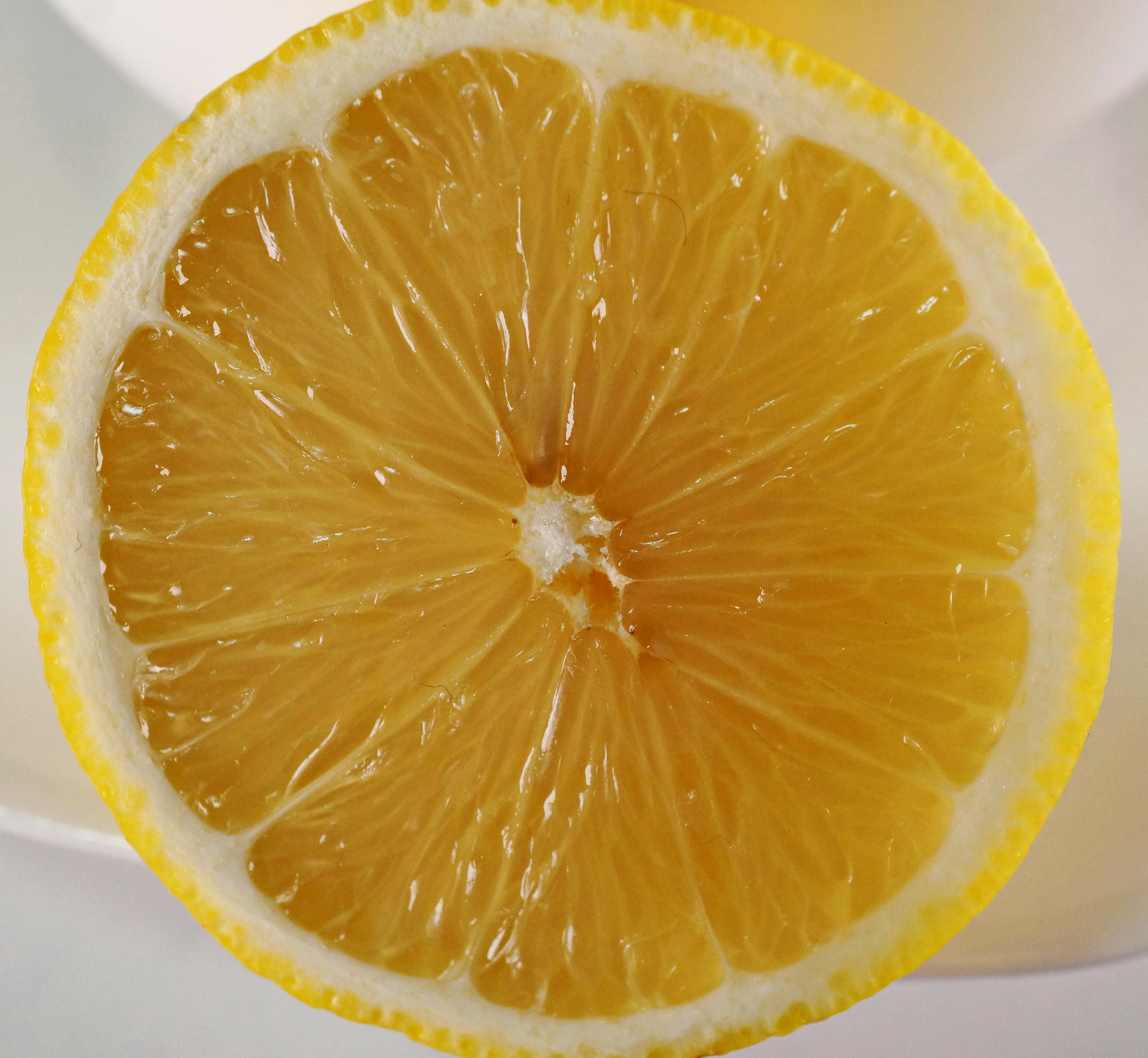 Zitrone DSC04726a.JPG