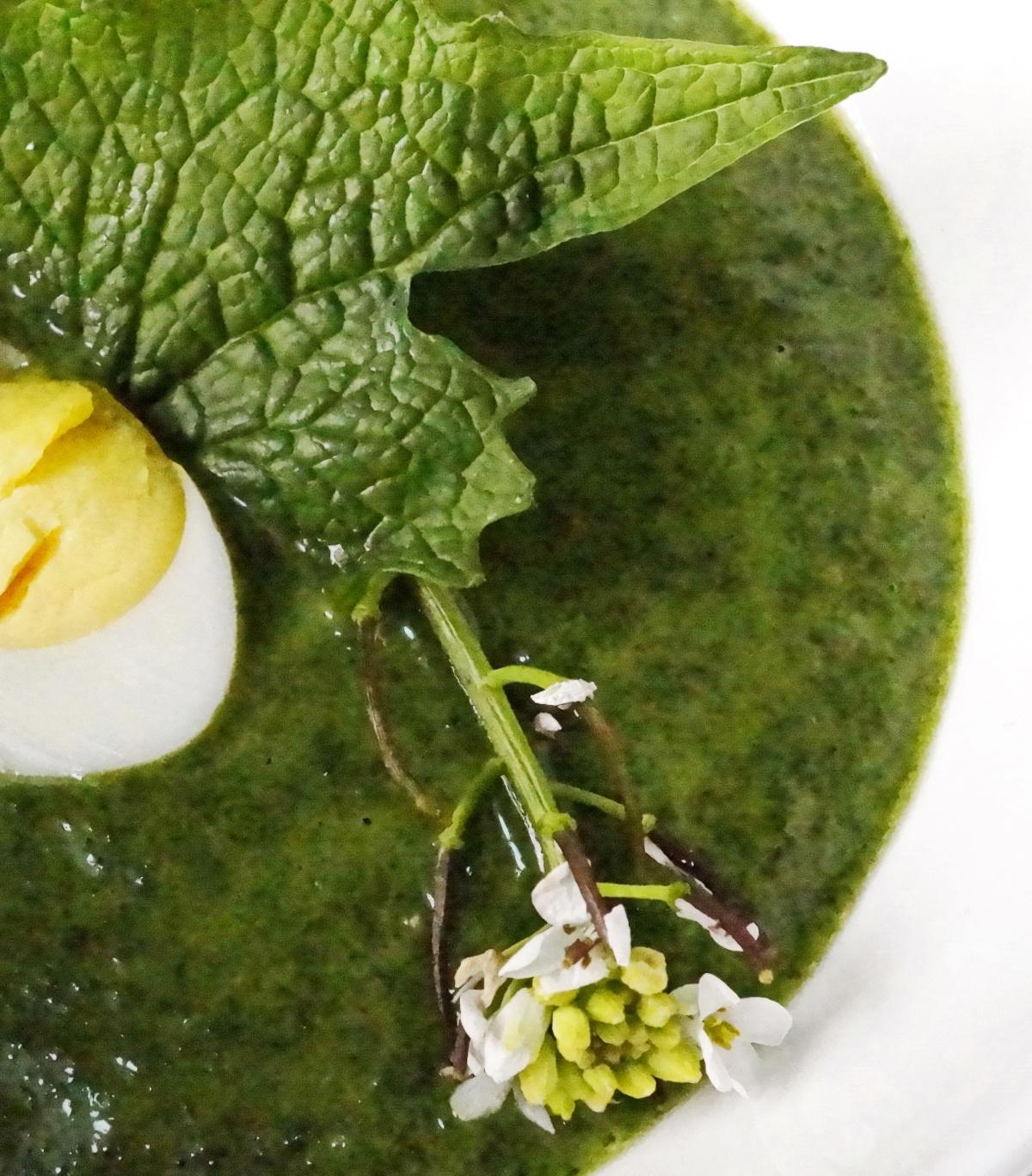 Spinatsuppe mit Kokosmilch, Knoblauchsrauke &Wachtelei