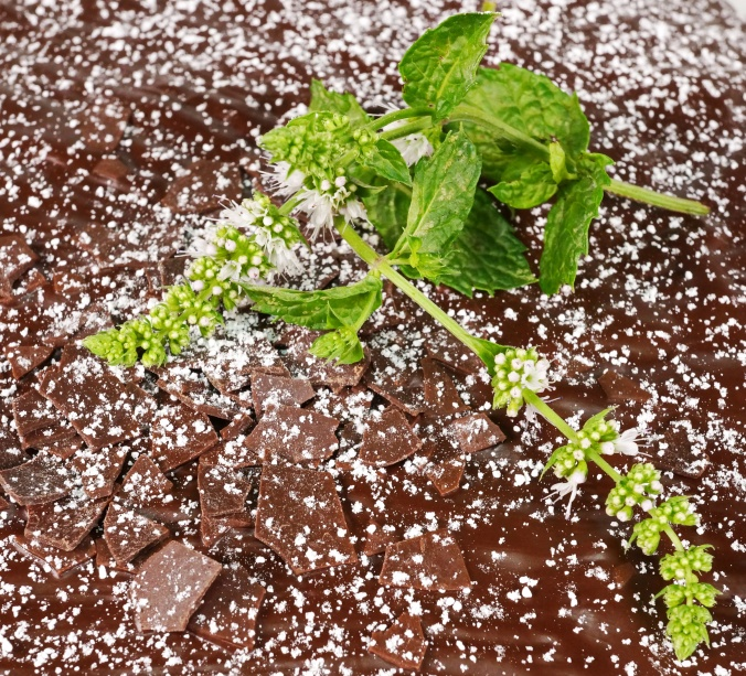 Zucchini Nuss Kuchen DSC07061a.JPG