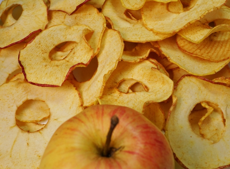 Apfelchips getrocknete Apfelringe DSC09130a.JPG