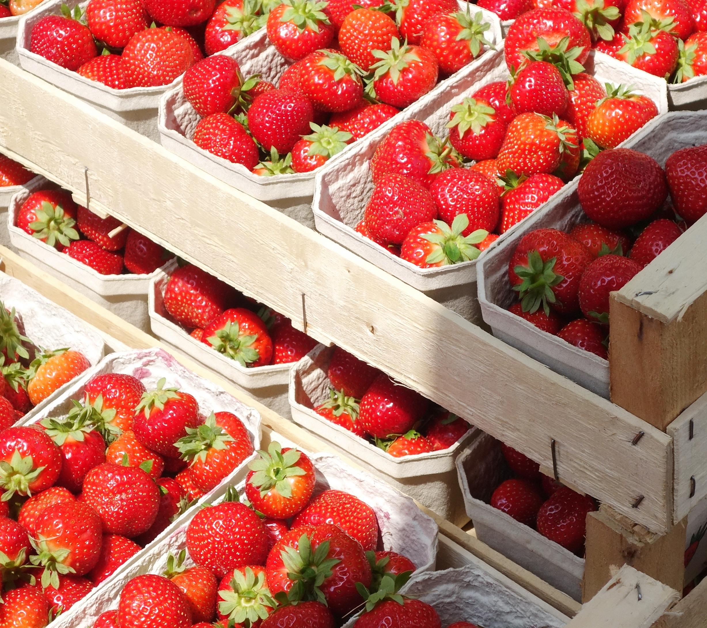 Erdbeeren Markt DSC01952b.JPG