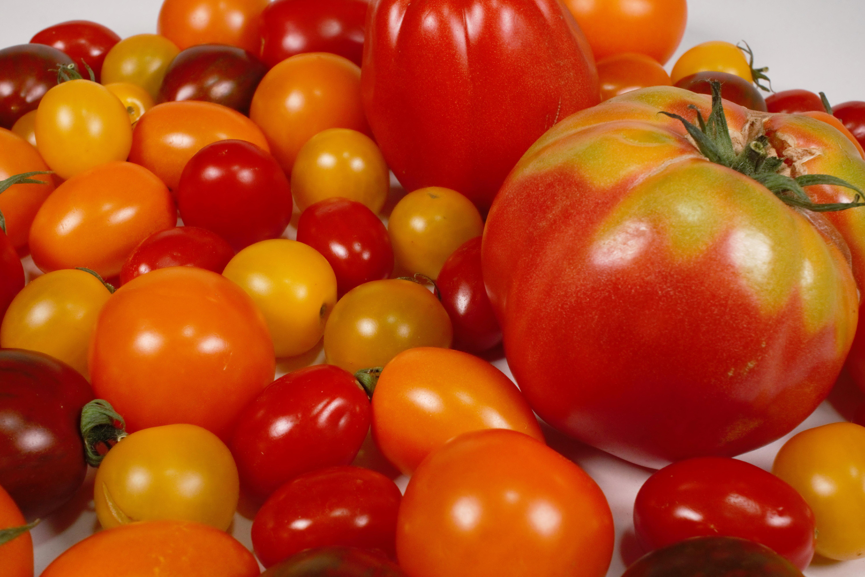 Tomaten Carpaccio coconutcucumber.comDSC06797